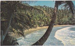 Baccolet Beach (Trinidad Tobago ) - Autres