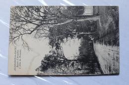 33510 - Andernos-les'Bains - L'Allée Du Broustey - 580CP01 - Andernos-les-Bains