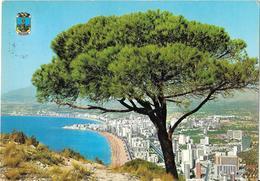 BENIDORM - Vista Panoramica - Alicante
