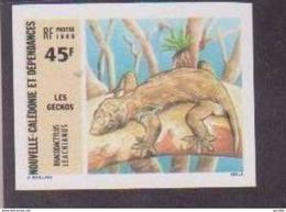 Nouvelle Calédonie Non Dentelé Imperfored MNH Gecko. - Reptiles & Batraciens