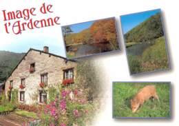 CPM - Image De L'Ardenne - België
