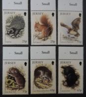 Jersey 1998 Small Mammals SG911-916 Set Of 6 Values Hedgehog Squirrel Pipistrelle Vole Shrew Mole Animals - Jersey