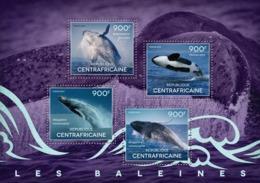 Central Africa  2014 Fauna Whales - Repubblica Centroafricana