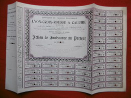 ACTION COMPAGNIE DU TRAMWAY ELECTRIQUE DE LYON CROIX ROUSSE A CALUIRE 1896 - Autres