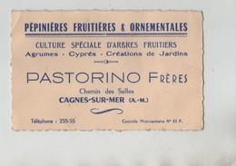 Carte De Visite Pépinières Fruitières Et Ornementales Pastorino Cagnes Sur Mer Agrumes Cyprès - Cartes De Visite