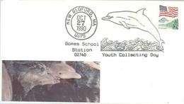 POSTMARKET  USA - Delfines