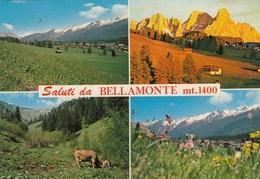 12300-SALUTI DA BELLAMONTE(TRENTO)-FG - Saluti Da.../ Gruss Aus...