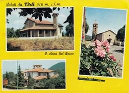 12302-SALUTI DA TIRLI(GROSSETO)-FG - Saluti Da.../ Gruss Aus...