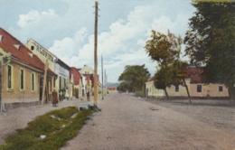 AK - Kroatien - PLETERNICA (Slawonien) - Partie I/d Duga Ulica 1920 - Croatie