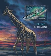 Central Africa 2013 Fauna Of Africa  ,giraffe - Central African Republic