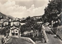 Cartolina - Postcard -   Viaggiata -   Sent  -  Castello Tesino,Panorama.  ( Gran Formato )   Anni 60° - Trento