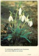 Fleurs - Voir Scans Recto-Verso - Fleurs, Plantes & Arbres
