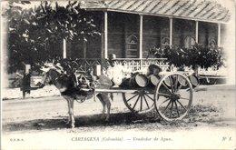AMERIQUE --  COLOMBIE --  CARTAGENA - Vendedor De Agua - Colombia