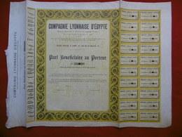 ACTION COMPAGNIE LYONNAISE D EGYPTE 1905 - Azioni & Titoli