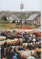 CPM 15 SAINT URCIZE ... Foire Du 9 Août 1991 (Livenais 090891) Marché Vaches Bestiaux. Carte Verticale - Autres Communes