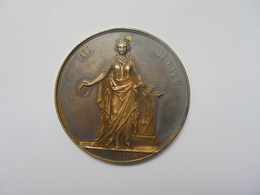 LIEGE-1894(ARGENT) SOCIETE LITTERAIRE-1er PRIX  Par J.Danse F.-23,5 Grammes-40 Mm - Professionnels / De Société