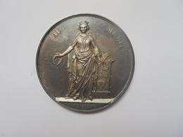 LIEGE-1894(ARGENT) SOCIETE LITTERAIRE-2ème PRIX  Par J.Danse F.-24 Grammes-40 Mm - Professionnels / De Société
