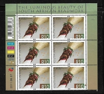 South Africa, 2011, R10 Control Block Of 6, MNH ** - South Africa (1961-...)