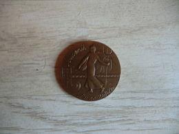Monnaie De Paris Souvenir D'une Ville - établissement De Pessac - En Bonze - 40 Mm 31.48 G - Non-datés