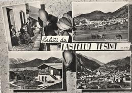Cartolina - Postcard -   Viaggiata -   Sent  -  Castello Tesino, Saluti. ( Gran Formato ) Anni 60° - Trento