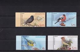 """Moldova 2015 """"Birds Of Moldova (VII) Sparrows"""" ** - Moineaux"""
