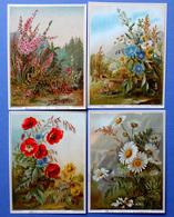 4 CHROMOS LITHOGRAPHIES  .... ..FLEURS DES CHAMPS....TEXTE POUR PRÉSENTER DES VŒUX ET FÉLICITATIONS - Vieux Papiers