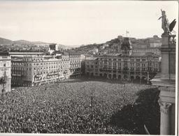 Cartolina - Postcard -   Viaggiata -   Sent  -  Trieste .  ( Gran Formato )  Anni 50° - Trieste