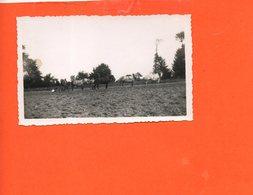 Chevaux - Attelage Labourage Terre   (dimensions Photo 11.2 X 6.7) - Paarden