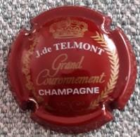 CAPSULE CHAMPAGNE  DE  TELMONT - Autres
