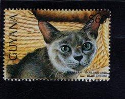 740902610 POSTFRIS  MINT NEVER HINGED EINWANDFREI SCOTT 3102H DOMESTIC CATS MALAYAN - Guyane (1966-...)