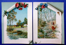 2 CHROMOS LITHOGRAPHIES.....  GRAND FORMAT......CHASSE A COURRE ....  CERF.....    BICHE - Vieux Papiers