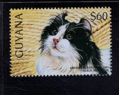 740904488 POSTFRIS  MINT NEVER HINGED EINWANDFREI SCOTT 3102B DOMESTIC CATS AMERICAN CURL - Guyane (1966-...)