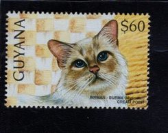 740906417 POSTFRIS  MINT NEVER HINGED EINWANDFREI SCOTT 3102A DOMESTIC CATS BIRMAN - Guyane (1966-...)