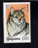 740906987 POSTFRIS  MINT NEVER HINGED EINWANDFREI SCOTT 2948 DOMESTIC CATS MAINE COON - Guyane (1966-...)