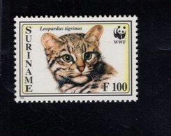740909354 POSTFRIS  MINT NEVER HINGED EINWANDFREI SCOTT 1013 WWF ANIMALS CAT - Surinam