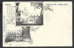 +++ CPA - CLABECQ - Château De M. Le Baron Snoy   // - Tubeke