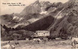 Torino - Balme - Piano Della Mussa Colla Ciamarella - Fp Vg1916 - Sin Clasificación
