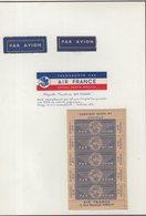 ETIQUETTES A BAGAGES : FRANCE . AIR FRANCE . - Étiquettes à Bagages
