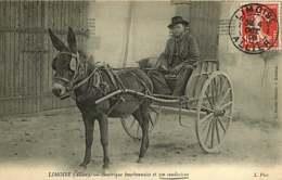 280319C - 03 LIMOISE Bourrique Bourbonnaise Et Son Conducteur - Attelage âne - Other Municipalities