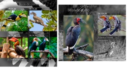 Sao Tome 2019 Hornbills Birds MS+S/S ST19210 - Famous People