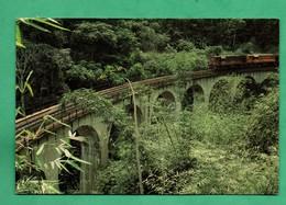 Congo Viaducs Dans Le Mayombe Avec Train - Congo - Brazzaville