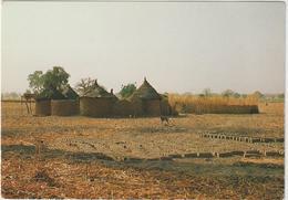 Afrique  : Burkina  Faso , Habitation , La Case  En  Village   Mossi - Burkina Faso