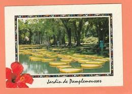 ILE MAURICE - JARDIN DE PAMPLEMOUSSE - Mauritius