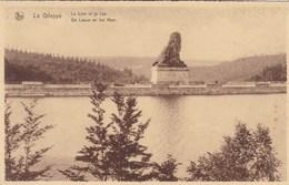 Gileppe, Le Lion Et Le Lac (pk58122) - Gileppe (Stuwdam)