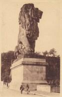 Gileppe, Le Lion (pk58124) - Gileppe (Stuwdam)