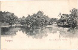 Singapore - Lake At Botanical Gardens - Singapore