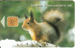 FINLAND - Red Squirrel, Sonera Telecard, Tirage 20000, 12/98, Used - Zonder Classificatie