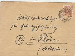 GERMANY 1948 Enveloppe To HOLSTEIN.BARGAIN.!! - Amerikaanse, Britse-en Russische Zone