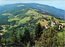 PASSO CROCE D'AUNE  BELLUNO  Monte Avena  Panorama Incantevole - Belluno