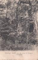 (Paysage) Hasselt Parc Du Château De Henegauw Treksehneren - Hasselt